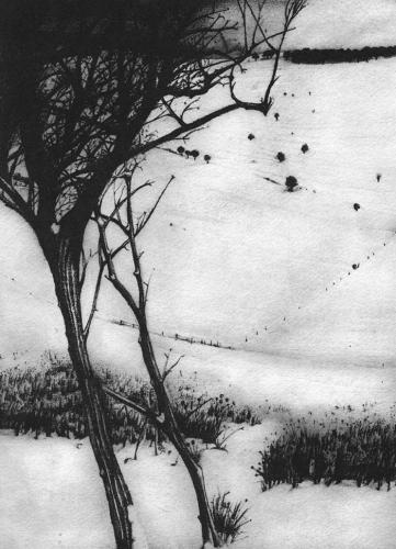 south-downs-winter-1-prints christopher knox.jpg